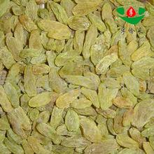 hot sale low price dried fruit raisins