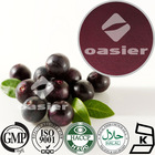 Super Antioxidant Products Acai berry Powder 4:1 10:1 TLC