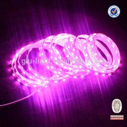 Newest 5050 Pink led strip, DC24V/DC12V 440 nm Pink Flexibl LED Strip light