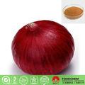 medicina de la hierba de cebolla etuber extracto de la semilla