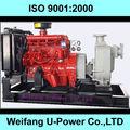 Bombas para extraer agua de un pozo! China fábrica de la venta caliente de riego diesel bombas de agua