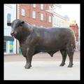 de haute qualité en laiton antique en métal trousseau vache bull