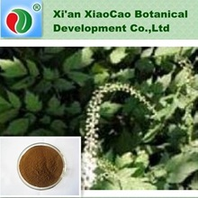 Natural Black Cohosh Extract(triterpene glycosides),Black Cohosh Powder Extract