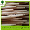 L'agriculture. jardin outils à main des bâtons de bois