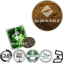 Black Cohosh Extract Triterpenes Glycosides Powder 84776-26-1
