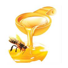 Hot sale 2014 new organic raw honey