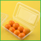 Eco-Friendly Disposable Clear Plastic Hinged Food Container