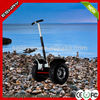 Shenzhen Ocam chariot 2014 the newest design Esway gas three wheel scooters for sale