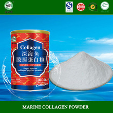 high quality products 99% protein edible nutritional collagen supplements