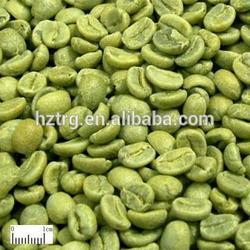 Factory Supply green coffee bean extract chlorogenic acid powder 50%