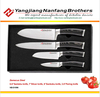 4pcs high quality Japanese damascus knife set made in China