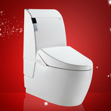 Siphonic One Piece Toilet with slow down seat cover and fittings outdoor toilet