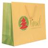 Biodegradable Custom Printed Retail Shopping Bag