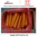 Nouvelle saison fraîche carotte