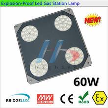 CE 60W Meanwell Power Bridgelux chip explosion-proof lighting fixture