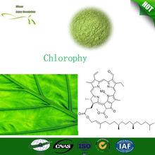 orgánica extracto de plantas naturales clorofila en polvo