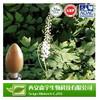 100% natural black cohosh extract , Triterpen Saponine Black Cohosh Extract