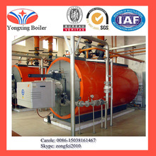 hot sale all over the world CWNS series natural gas water boiler