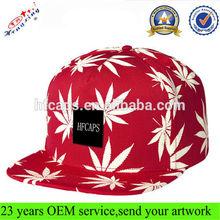 Fashion Custom Snapback Hat/Flat Brim Custom Snapback Hat/5 Panel Snapback Hat and Cap