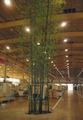 De bambú artificiales, madera del árbol, decoración del árbol de plástico