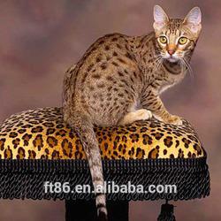 plush cartoon artificial lucky cats modern and new home bengal cat