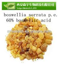 frankincense gum , Frankincense/Olibanum/Mastic Extract Boswellic Acid 65%