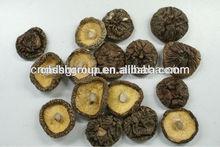 dried mushroom flakes