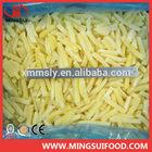 new corp frozen french fries bulk