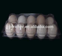 PET / PVC hatching plastic quail egg trays for sale