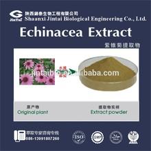 Natural 4% polyphenol powder Echinacea Extract