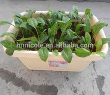 Henan garden clay soil organic fertilizer manufacturer on sale
