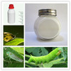 Regent Insecticide fipronil / Diflufenican 5% sc powder insecticide manufacture