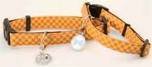 P.U collar & leash
