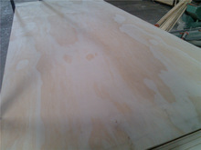 pine plywood sheet /commercial plywood/plywood price