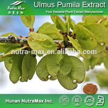 Ulmus Pumila Extract , Ulmus Pumila Extract Powder , Ulmus Pumila P.E.
