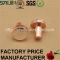 Conectores elétricos de cobre cabeça chata Rivet para Automotive elétrico Switches