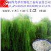 Manufacturer sales white willow bark p.e.