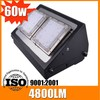60w high power wall outdoor LED gardens lamp with good quality low price