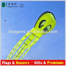 Promotional Customized foldable kite