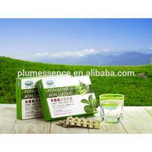 Wholesale Organic Fruits for Noni Price