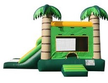 Summer popular cheap bounce house with water slide