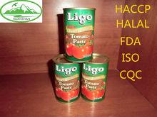 170g tin paste tomato in bulk