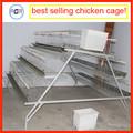melhor fábrica quente vender aves camada de galinha gaiola