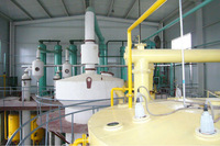 20T/D Groundnut Oil Extractor Machine