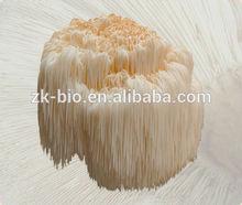 Factory supply Natural Lion's Mane Mushroom extract powder