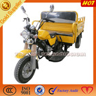 Hot sale Chinese 3 wheel trike/petrol motorcycle for cargo