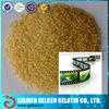Industrial gelatin photographic