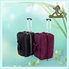 fashion custom travelling bag waterproof nylon travel bag