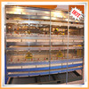 Large Scale Automatic H-type and A-type Broiler Chicken Cage/Layer Chicken Cage