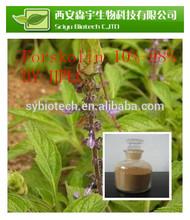forskolin 98% , 100% Natural Coleus forskohlii Extract 10%Forskolin HPLC